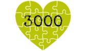 3000 Teile