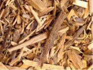 Muira Puama - Holz